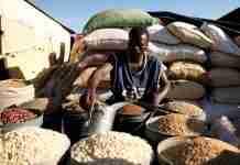Zimbabwe economy United Nations