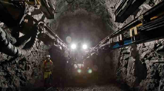 Zimbabwe mining RioZim