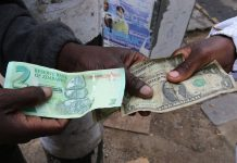 currency Zimbabwe